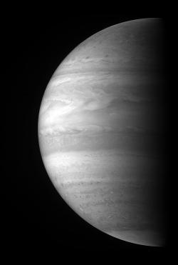 Jupiter's High-Altitude Clouds